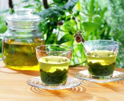 Bí quyết giảm béo hiệu quả từ lá trà xanh tươi