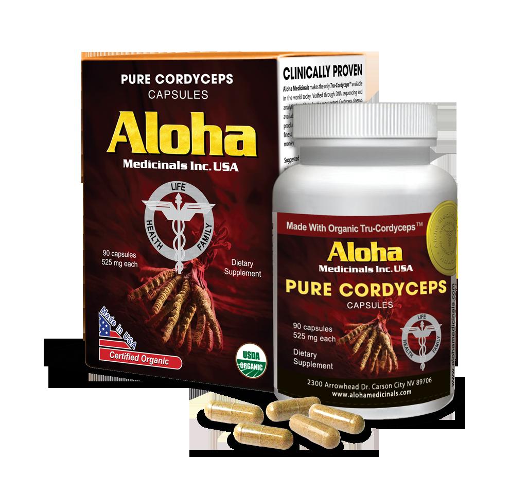 Cách sử dụng đông trùng hạ thảo aloha hiệu quả