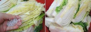 kimchi-cai-thao-2
