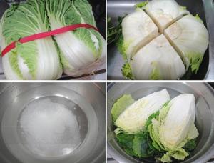 kimchi-cai-thao