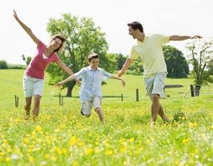 Sữa ong chúa tăng cường sức khỏe cho gia đình