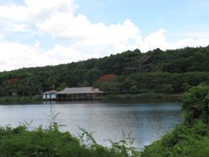 Hồ suối lam đẹp thơ mộng