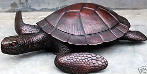 Rùa đen