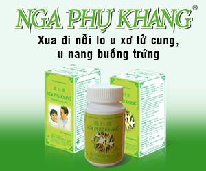 Nga_phu_khang-300x250