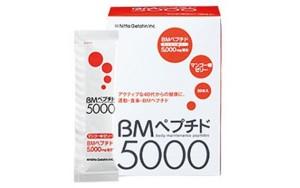 BM 5000