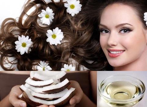 Cách chăm sóc tóc hư tổn bằng dầu dừa