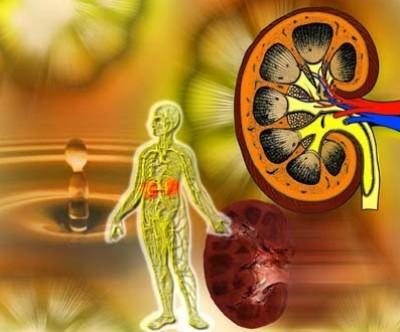 Nguyên nhân, triệu chứng và cách phòng bệnh suy thận cấp