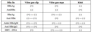 viem-gan-b1