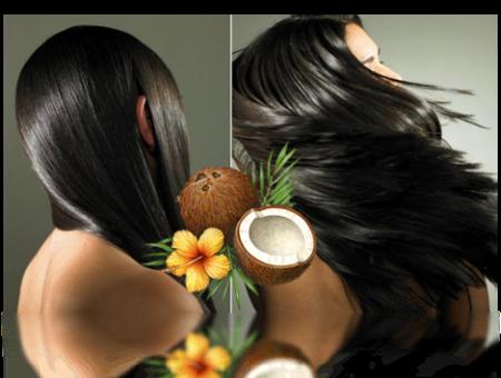 Bí quyết của dầu dừa là giúp tóc mọc nhanh dài