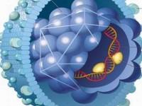 Tiềm hiểu bệnh viêm gan B