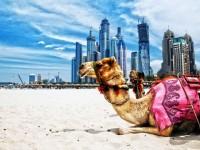 9 mẹo vặt khi đi du lịch bạn cần biết