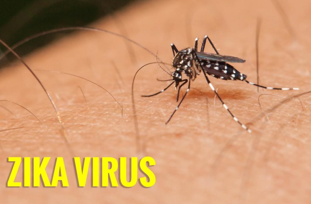 virus zika và nhung nguy hiem tim an