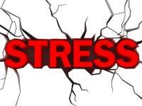 Mẹo nhỏ giảm stress cho bạn chỉ sau vài giây