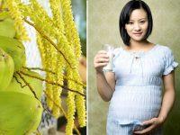 Bà bầu có nên uống nước dừa hay không ?