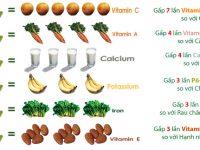 Giá trị dinh dưỡng của cây chùm ngây được tổ chức quốc tế công nhận