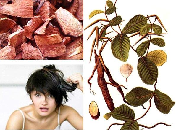 Cách chữa tóc bạc sớm bằng các loại thực phẩm tự nhiên
