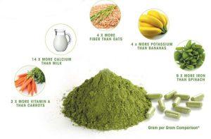 Giá trị dinh dưỡng từ trà chùm ngây