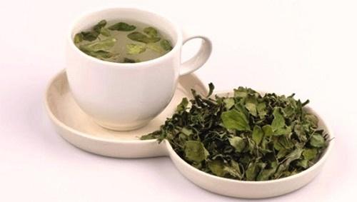 Hướng dẫn cách làm trà chùm ngây tại nhà