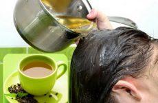 Cách trị rụng tóc an toàn và hiệu quả từ trà xanh