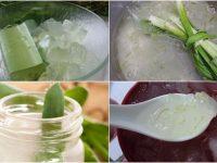 Hướng dẫn cách nấu nước nha đam để thanh lọc cơ thể