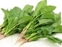 Tác dụng của rau bina đối với sức khỏe