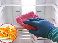 Khử mùi hôi tủ lạnh với vỏ cam. quýt