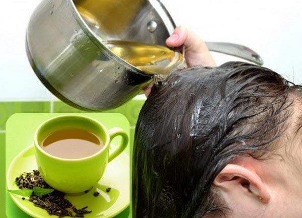 Cách trị rụng tóc bằng lá trà xanh