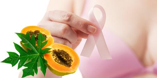 Điều trị ung thư vú bằng lá đu đủ