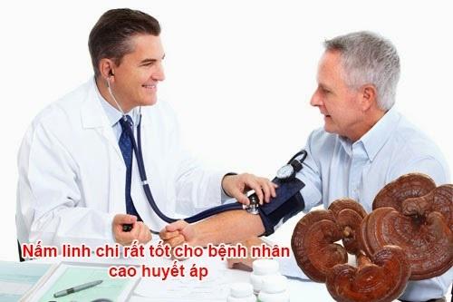 Nấm linh chi hỗ trợ điều trị bệnh huyết áp