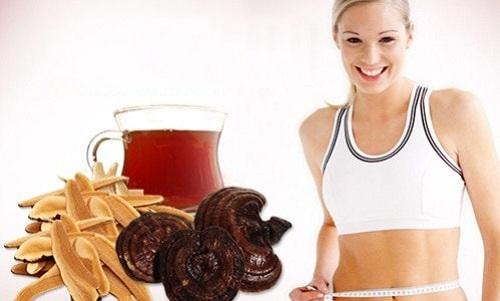 Nấm linh chi giúp giảm cân, chống béo phì