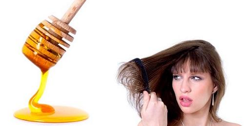 Trị rụng tóc bằng mật ong rừng nguyên chất
