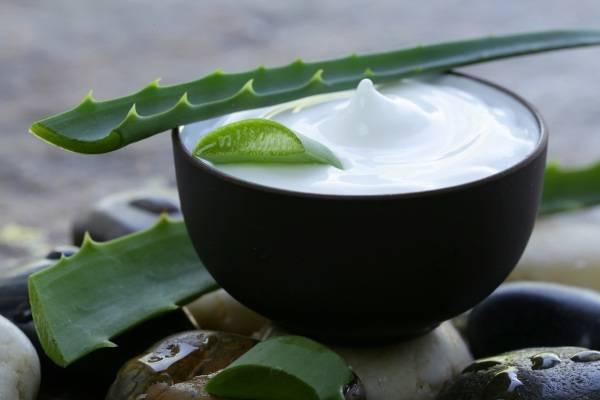 Kem dưỡng ẩm da từ nha đam