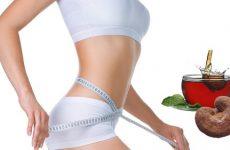 Uống nấm linh chi giảm cân
