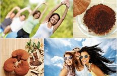 Người trẻ nên dùng nấm linh chi