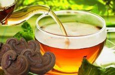 Uống nấm linh chi giúp hỗ trợ điều trị suy thận