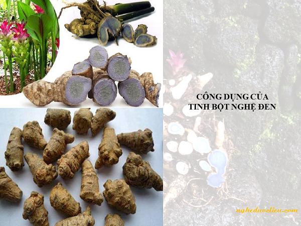 Tinh bột nghệ đen và mật ong ngăn ngừa, điều trị các bệnh về dạ dày