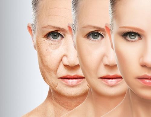 Trà xanh làm chậm quá trình lão hóa