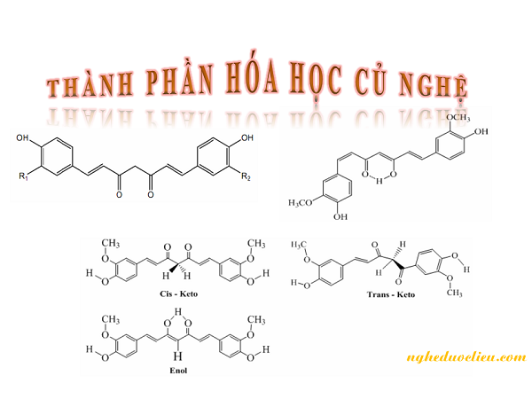 Thành phần hóa học trong củ nghệ vàng