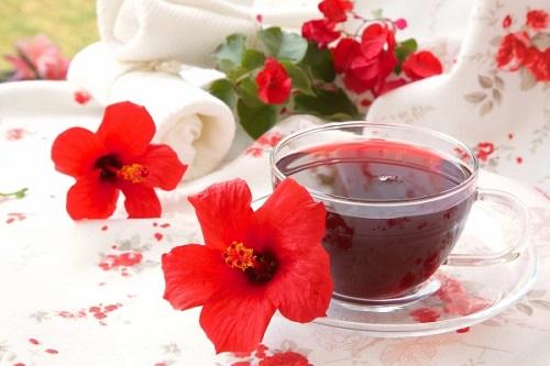 Trà giảm cân từ nấm linh chi, hoa dâm bụt