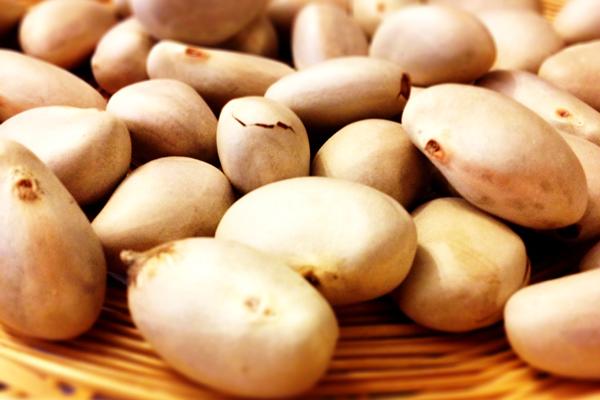 Hạt mít là vị thuốc vừa chăm sóc mắt đẹp vừa chữa bệnh yếu sinh lý