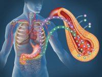 Tổng hợp những loại insulin chữa bệnh đái tháo đường không cần chích