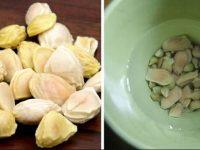 Mách bạn cách chữa đau dạ dày hiệu quả bằng hạt bưởi