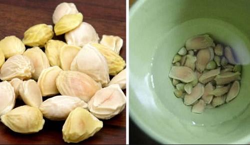 Cách sử dụng hạt bưởi điều trị đau dạ dày
