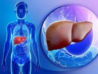 Bạn có biết tác dụng của việc thải độc gan và thận?