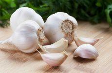 5 cách trị mụn bọc tại nhà bằng nguyên liệu tự nhiên
