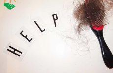 Dấu hiệu nhận biết tóc rụng nhiều