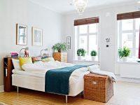 Gợi Ý 5 Cây Cảnh Thích Hợp Trang Trí Phòng Ngủ