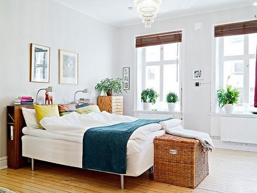 Những lưu ý khi chọn cây trồng trong phòng ngủ